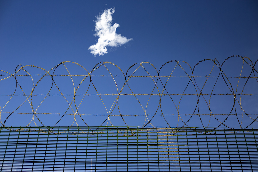 Refugee dream to sneak over the border - concept of a prisoner dreaming of freedom or escape. Piece between two countries in border line. Jail barbed wire fence and a white freedom dove flying over.