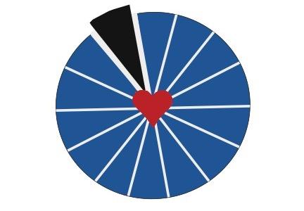 Life Assessment Wheel